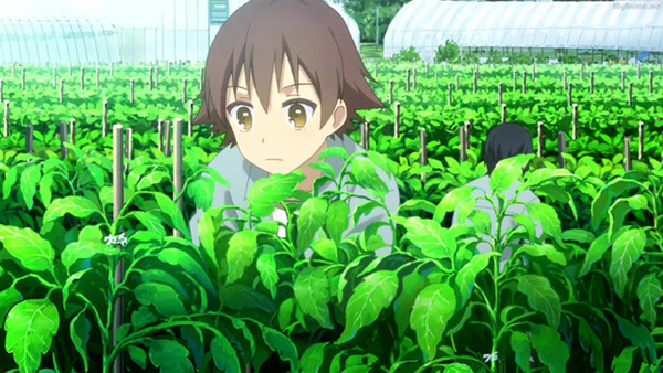 Anime Studio Asahi Production Forces Animators to Work on Farm