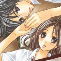 LDK Manga Explores Unexpected Romance
