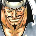 Bleach Manga, Volume 28 Review