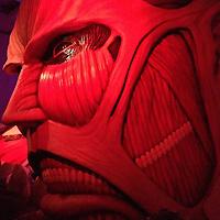 Attack on Titan Exhibition Report