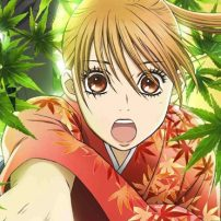 Chihayafuru Puts All Its Cards On The Table in a Premium Box Set