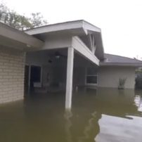 How You Can Help Sentai Filmworks With Hurricane Harvey Relief