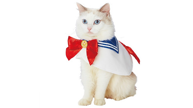 Sailor Moon and Dragon Ball Pet Costumes are Bound to Breed Resentment