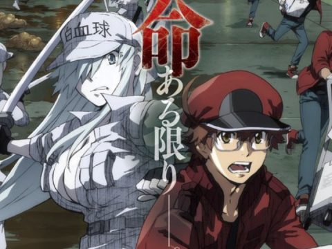 Cells at Work! Code Black Anime Announced for January 2021