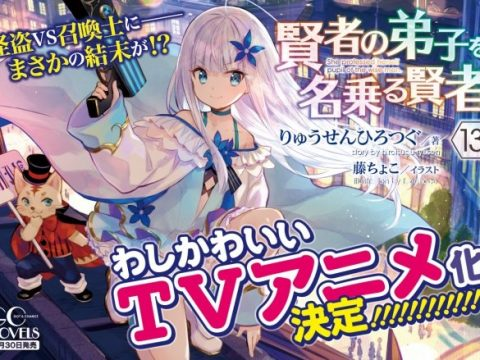 She Professed Herself Pupil of the Wise Man Novels Inspire TV Anime