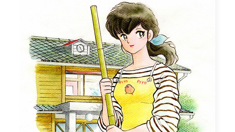 Maison Ikkoku Collector's Edition volume 1