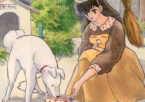 Maison Ikkoku Collector's Edition [Manga Review]