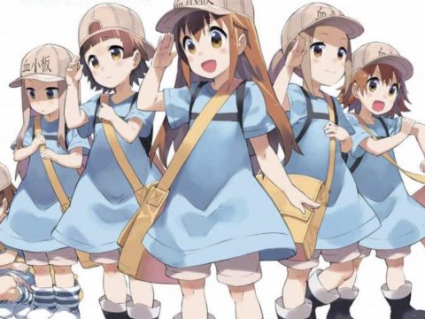Cells at Work! Platelets Spinoff Goes For Innocence and Cuteness