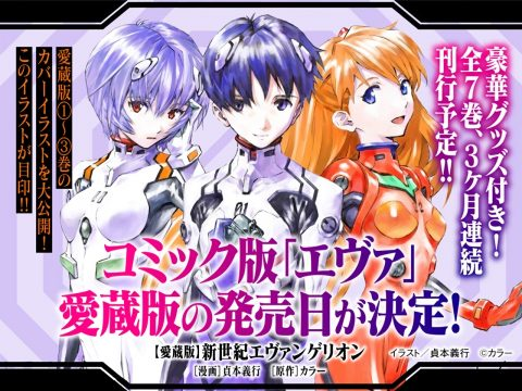 Evangelion Manga Collector's Editions Show Off Cover Illustrations