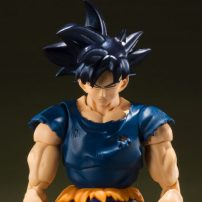 Limited Edition Dragon Ball Z Goku Figures Lost at Sea?