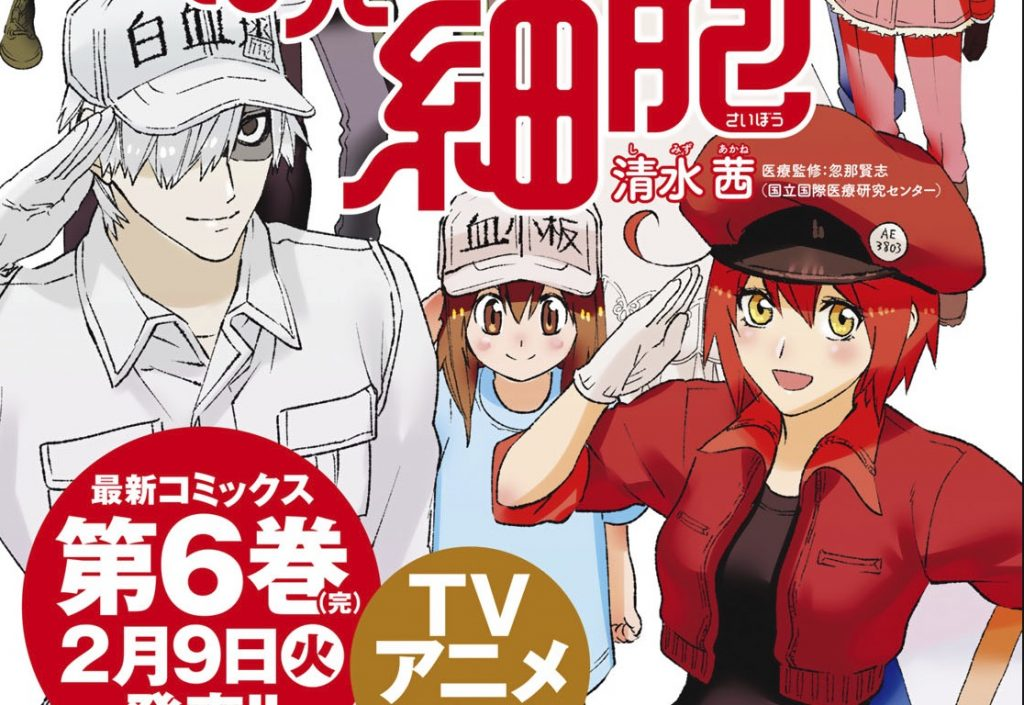 Today Marks the End of Akane Shimizu's Cells at Work! Manga