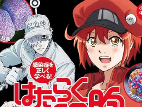 Cells At Work! Gets Illustrated Medical Textbook for Kids