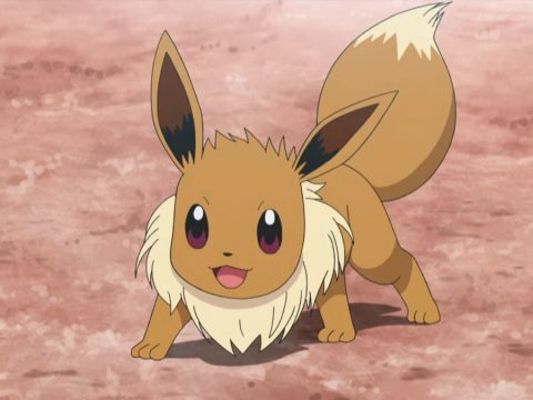 Lovable Pokémon from Gen 1… Who Aren't Pikachu or Eevee