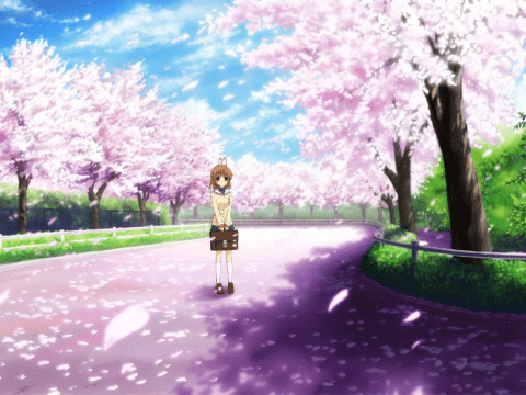 Sakura and Anime: Three Series Where Cherry Blossoms Are in Bloom
