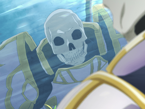 Skeleton in Another World Light Novels Inspire TV Anime