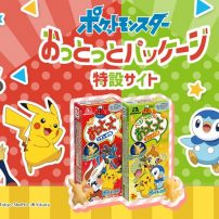 Collect 70 Pokémon Crackers in Japan and Enter to Win Prizes